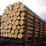 Лесоматериалы в Ростове на Дону (фото 2)